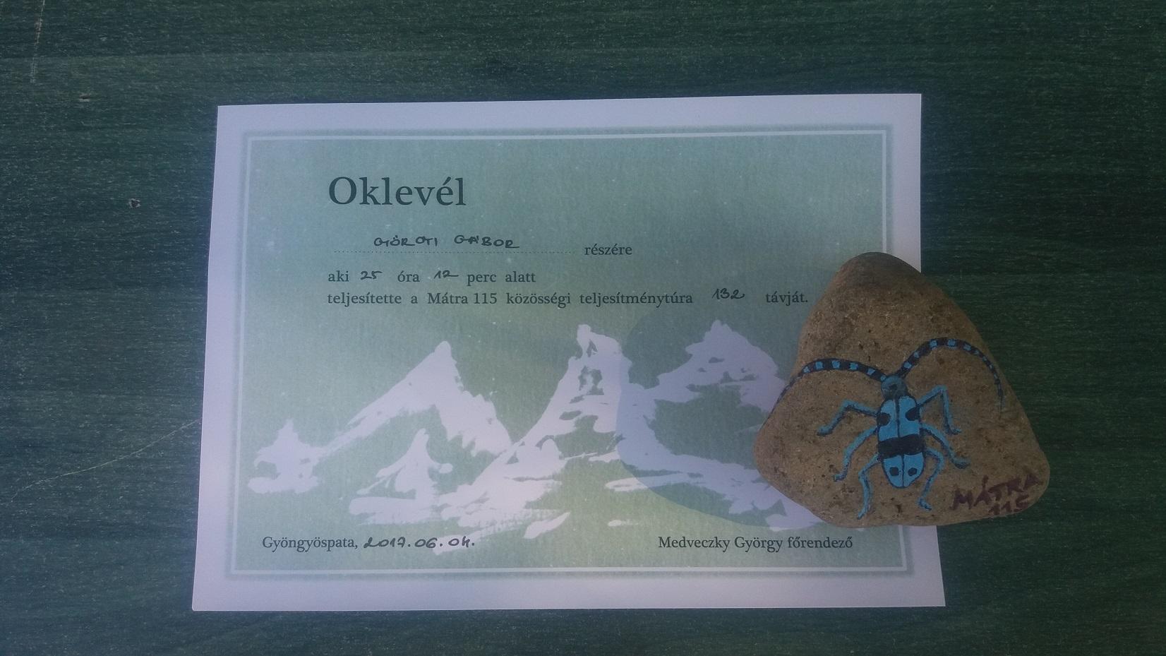 2017. június 3.  Mátra 115 - díjazás: festett kő